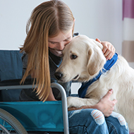 Dog Assistance in Disability achieves re-accreditation