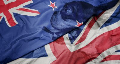 Kennel Club announces collaboration with Dogs New Zealand
