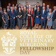 RCVS reports record number of vets joining Fellowship