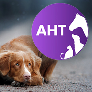 Animal Health Trust set to close