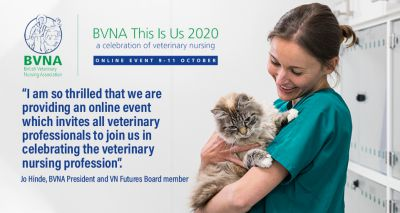 BVNA and RCVS to offer joint sessions at online event