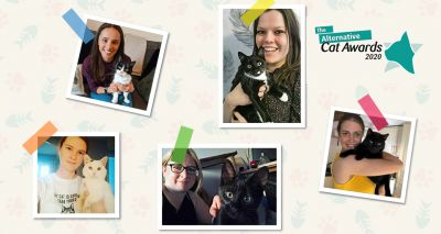 Cats Protection announces Alternative Cat Awards finalists