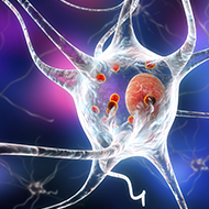 RVC and UCL to pioneer research into Parkinson's