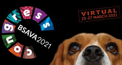 BSAVA Congress 2021 moves online
