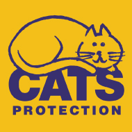 New report celebrates human-cat relationship