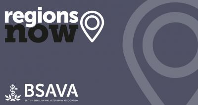 BSAVA's Regions Now programme to continue virtually