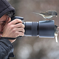 BVA announces annual photography competition