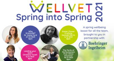 WellVet launches spring series of wellbeing talks