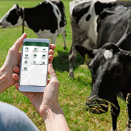 SRUC launches new app to connect farmers and vets