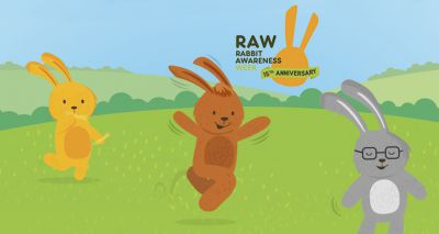 Rabbit Awareness Week launches 2021 campaign