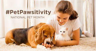 National Pet Month gets underway