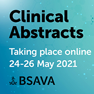 BSAVA announces online abstracts session