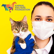 Animal welfare discussion forum returns for 2021