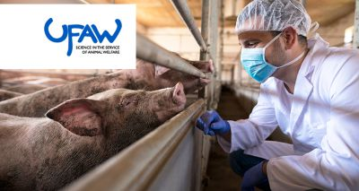 UFAW announces eighth animal welfare science conference