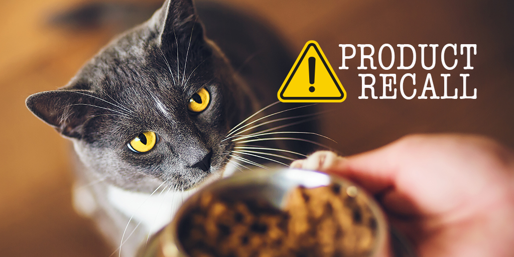 Cat food recalled over link to pancytopenia