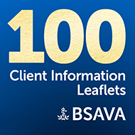 New additions to BSAVA drug client information leaflets