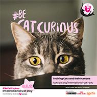 iCatCare promotes cat carrier training for vet visits