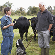 Annual vet visits 'crucial' to farm animal health and welfare