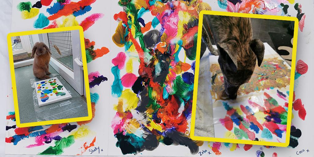 Rescue dogs create artwork for fundraiser
