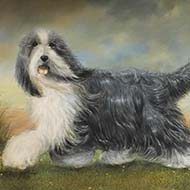 Kennel Club opens new art exhibition