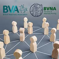 BVA and BVNA renew strategic partnership